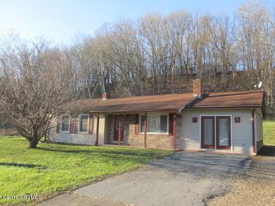 Bloomsburg Single Family Home For Sale: 539 Drinker Street