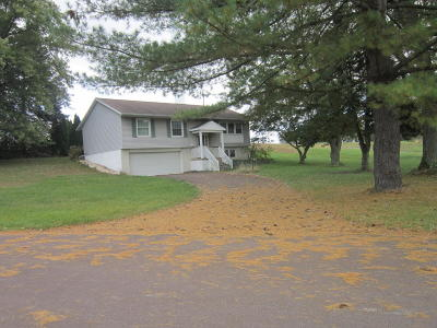 Bloomsburg Single Family Home For Sale: 4609 Old Berwick Road