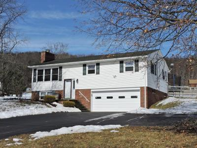 Single Family Home For Sale: 413 Fowlersville Rd