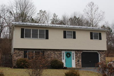Single Family Home For Sale: 9 Newky Rd