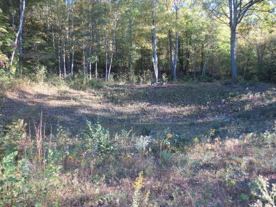 Bloomsburg Residential Lots & Land For Sale: Lot 170 Scenic Avenue
