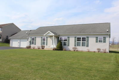 Single Family Home For Sale: 123 Meadow Green Drive