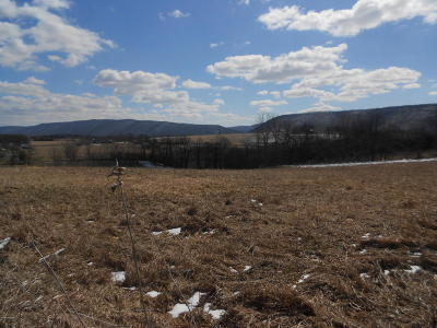 Bloomsburg PA Residential Lots & Land For Sale: $49,900