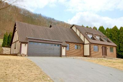 Bloomsburg Single Family Home For Sale: 440 Scenic Drive