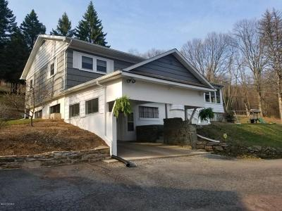 Berwick Single Family Home For Sale: 789 Knob Mountain Road