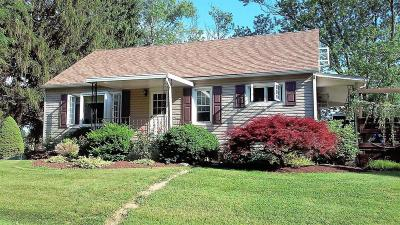 Berwick PA Single Family Home For Sale: $209,000