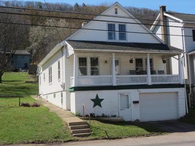 Single Family Home For Sale: 324 E Shamokin Street