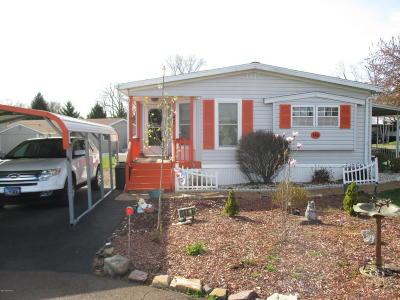 Single Family Home For Sale: 146 W Dawalt Street