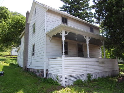 Bloomsburg Single Family Home For Sale: 223 Millville Road