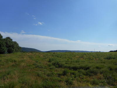 Nescopeck PA Residential Lots & Land For Sale: $65,000