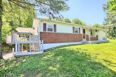 Single Family Home For Sale: 498 Lindy Acre Road