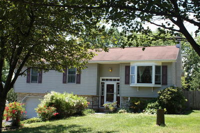 Single Family Home For Sale: 6464 Park Road