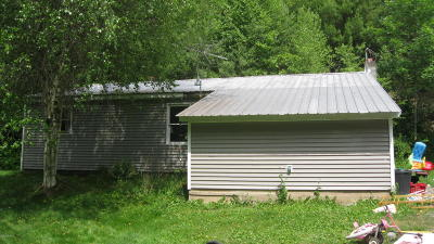 Benton Single Family Home For Sale: 2559 State Route 254 Highway