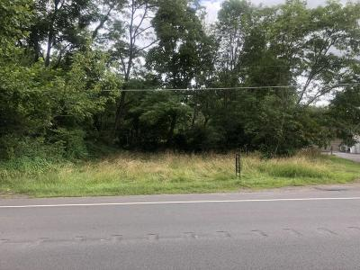 Residential Lots & Land For Sale: Route 93 Highway