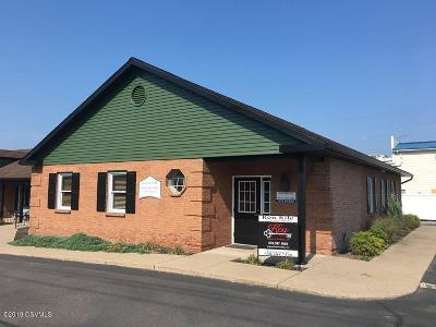 Berwick PA Commercial For Sale: $158,900