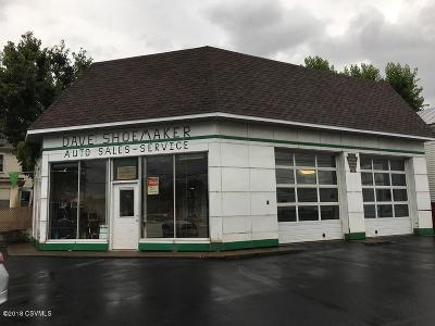 Berwick PA Commercial For Sale: $129,000