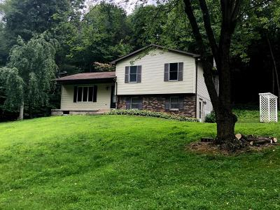 Single Family Home For Sale: 274 Thomas Road
