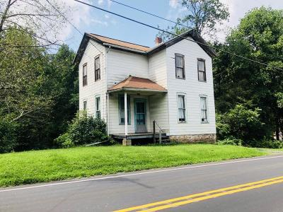 Dornsife PA Single Family Home For Sale: $36,900