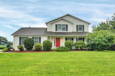 Single Family Home For Sale: 305 Lamplight Lane