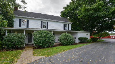 Bloomsburg Single Family Home For Sale: 91 Dahl Road