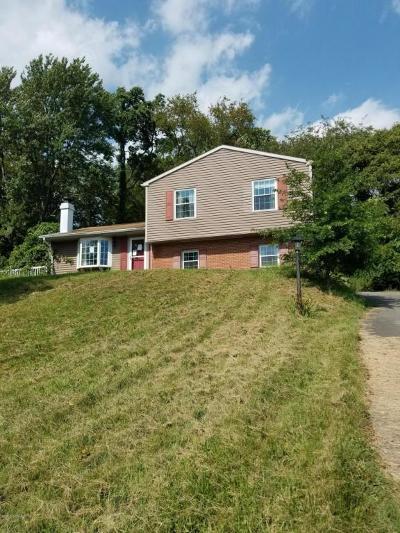 Single Family Home For Sale: 1245 Hillside Drive