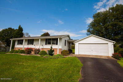Bloomsburg Single Family Home For Sale: 75 Amron Drive