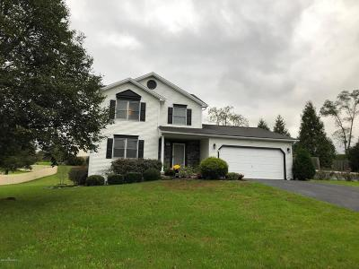 Single Family Home For Sale: 163 Ridgeway Drive