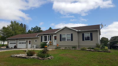 Berwick PA Single Family Home Active Contingent: $179,900