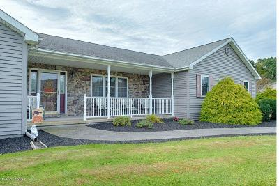 Columbia County, Luzerne County, Montour County Single Family Home For Sale: 19 Evelyn Lane