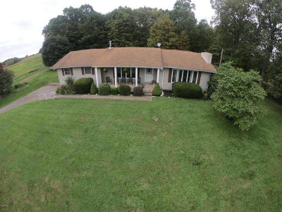 Single Family Home For Sale: 347 Millertown Road
