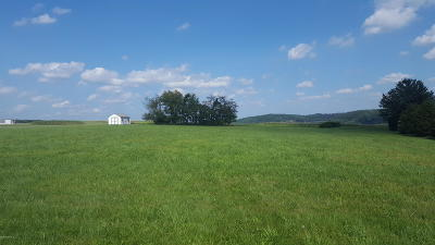 Bloomsburg Residential Lots & Land For Sale: 108 Old Field Drive