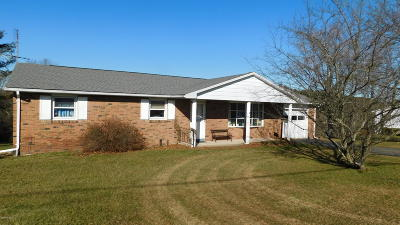 Bloomsburg Single Family Home For Sale: 155 Turners High View Road