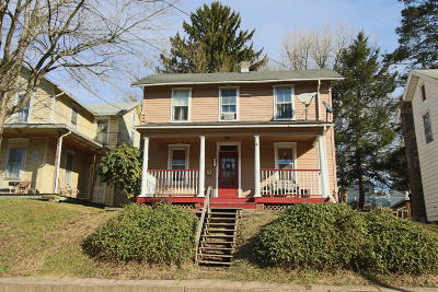 Columbia County Single Family Home For Sale: 541 Mill Street