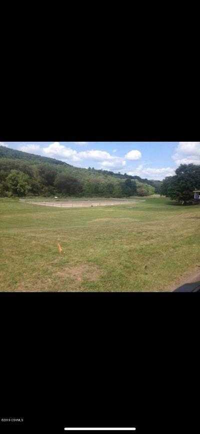 Berwick PA Residential Lots & Land For Sale: $32,000