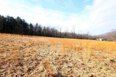 Bloomsburg Residential Lots & Land For Sale: Scotch Valley Drive