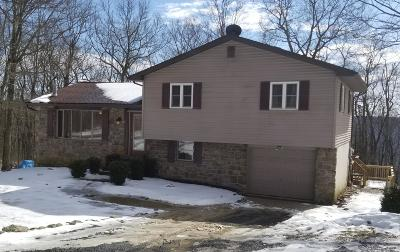 Catawissa PA Single Family Home For Sale: $175,000