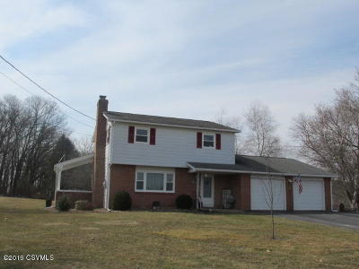 Bloomsburg Single Family Home For Sale: 305 Millertown Road