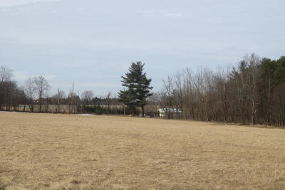 Residential Lots & Land For Sale: Lot #29 Carol Drive