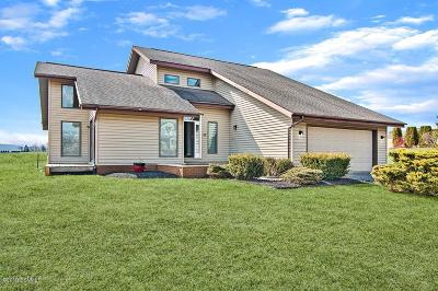 Columbia County, Luzerne County, Montour County Single Family Home For Sale: 55 N Greenbriar Road