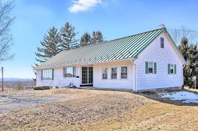 Danville Single Family Home For Sale: 771 White Hall Road