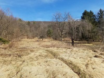 Berwick Residential Lots & Land For Sale: 669 Knob Mountain Road