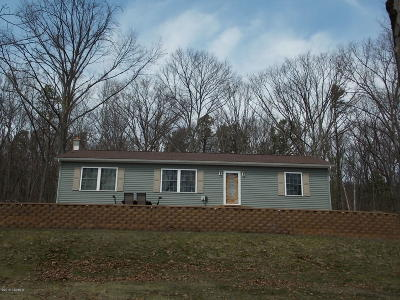 Berwick PA Single Family Home For Sale: $227,500
