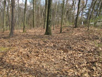 Danville Residential Lots & Land For Sale: Bald Top Road