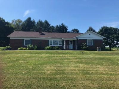 Berwick PA Single Family Home For Sale: $215,000