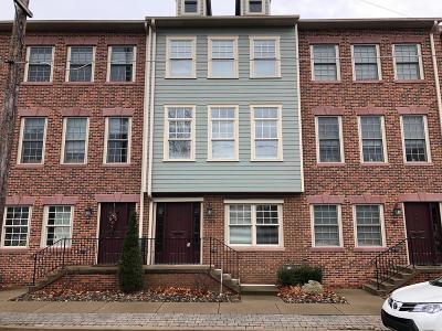 Danville Single Family Home For Sale: 109 Jacob's Landing Way