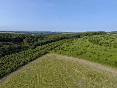 Danville Residential Lots & Land For Sale: Union Corners Road