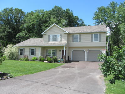 Columbia County, Luzerne County, Montour County Single Family Home For Sale: 6 Mourey Drive