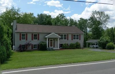 Bloomsburg Single Family Home For Sale: 7184 Old Berwick Road