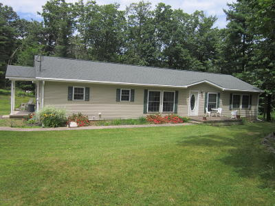 Columbia County, Luzerne County, Montour County Single Family Home For Sale: 482 Hickory Lane
