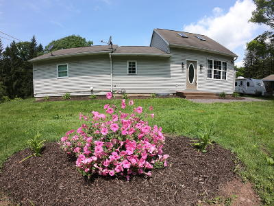 Columbia County, Luzerne County, Montour County Single Family Home For Sale: 1677 Mountain Road